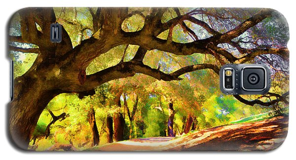 I Gave My Word To This Tree Galaxy S5 Case