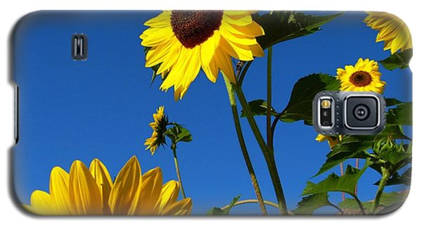 I Girasoli Dietro Casa Mia - Sunflowers In The Field Behind My House. Galaxy S5 Case by Mariana Costa Weldon