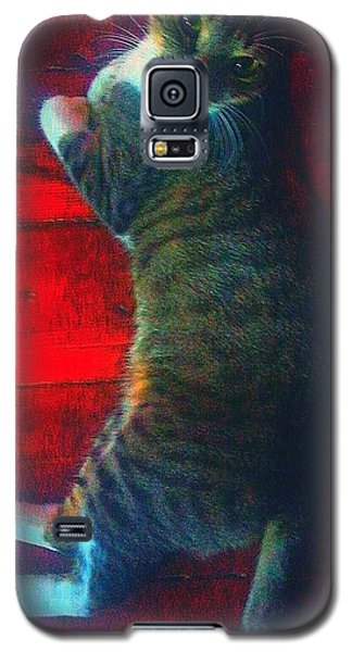 Galaxy S5 Case featuring the photograph I Got My Eyes On You by Joetta Beauford