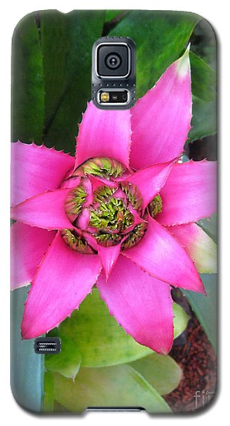 Pink And Beautiful  Galaxy S5 Case