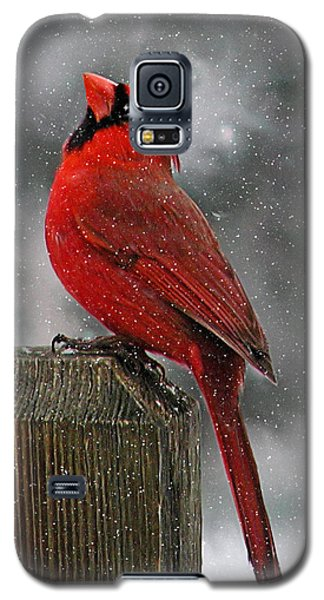I Love Snow..... Galaxy S5 Case by Judy  Johnson