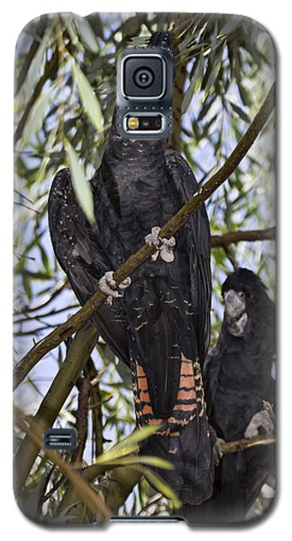 I Say Old Chap Galaxy S5 Case by Douglas Barnard