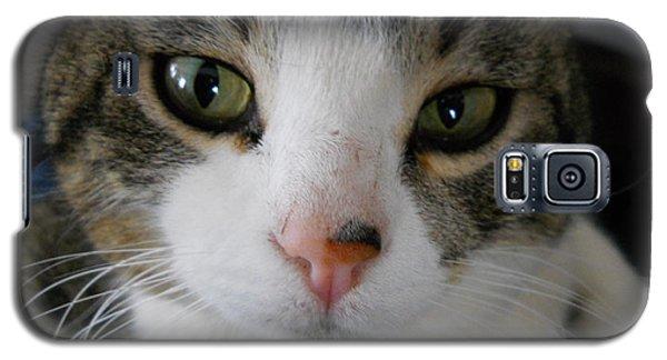 I See You Cat Galaxy S5 Case by Kent Lorentzen