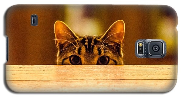 I See You Galaxy S5 Case by Mike Ste Marie