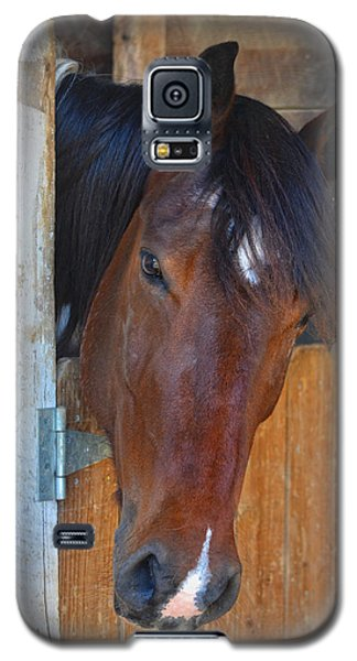 I Was Waiting For You Galaxy S5 Case by Sandi OReilly