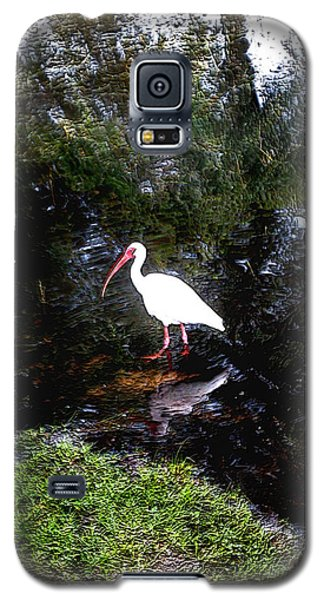Galaxy S5 Case featuring the photograph Ibis In Pond by Irma BACKELANT GALLERIES