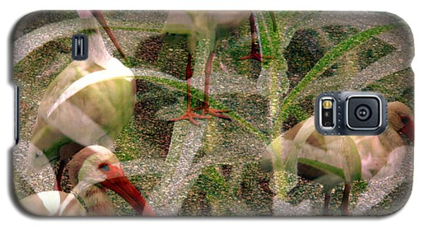 Galaxy S5 Case featuring the photograph Ibis In The Tall Grass by Irma BACKELANT GALLERIES