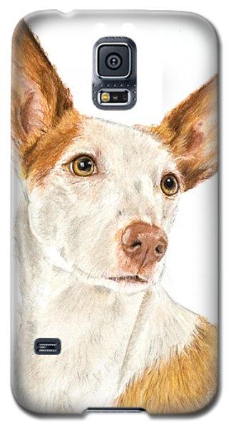 Ibizan Hound In Pastel Galaxy S5 Case