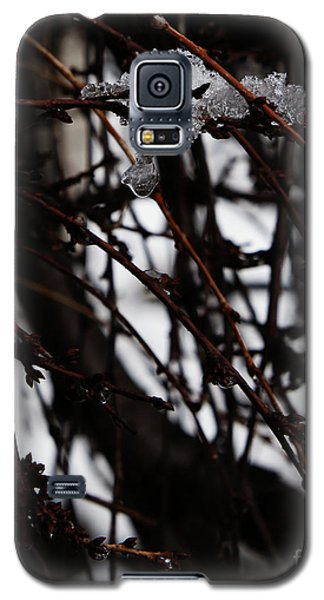 Galaxy S5 Case featuring the photograph Ice 2 by Linda Shafer