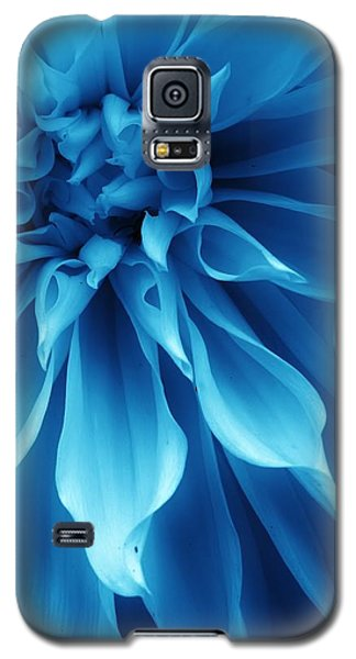 Ice Blue Dahlia Galaxy S5 Case