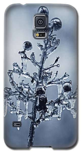 Ice Bouquet Galaxy S5 Case by Linda Segerson