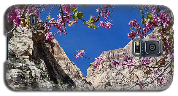 Galaxy S5 Case featuring the photograph Ice Box Canyon In April by Alan Socolik