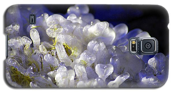 Galaxy S5 Case featuring the photograph Ice Bubbles by Linda Cox