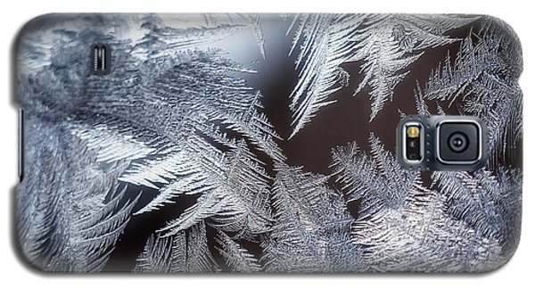 Icy Galaxy S5 Case - Ice Crystals by Scott Norris
