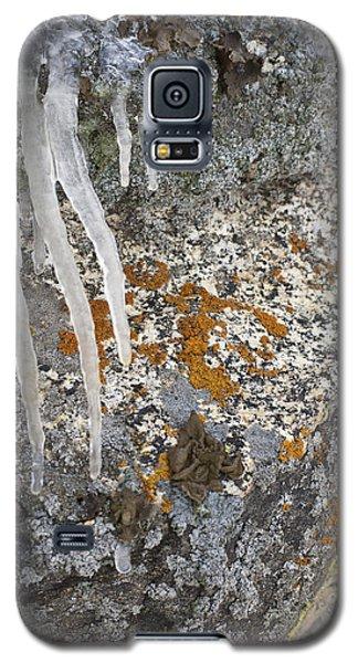 Ice Fall Galaxy S5 Case
