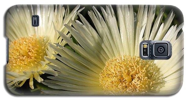 Ice Flowers Galaxy S5 Case