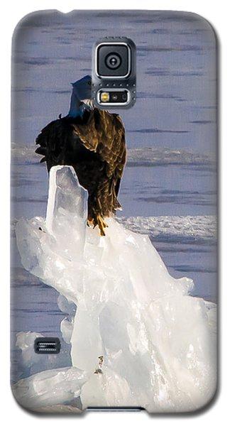 Ice King Galaxy S5 Case by Joe Scott