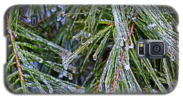 Ice On Pine Needles  Galaxy S5 Case