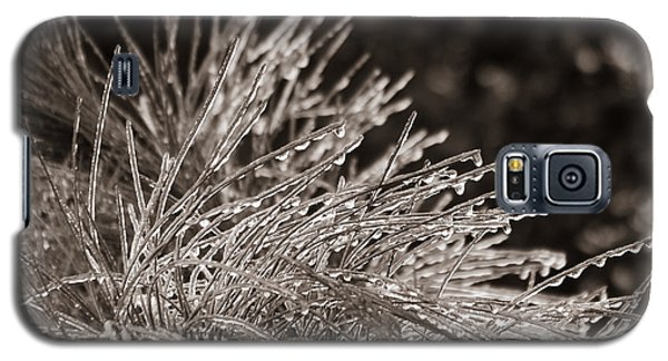 Galaxy S5 Case featuring the photograph Ice On Pine by Patricia Schaefer