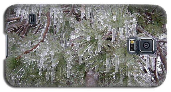 Galaxy S5 Case featuring the photograph Ice Pine by Deborah DeLaBarre