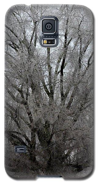 Ice Sculpture Galaxy S5 Case