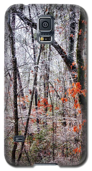 Ice Trees Galaxy S5 Case