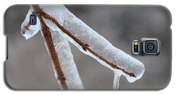 Galaxy S5 Case featuring the photograph Ice Twig by Douglas Pike