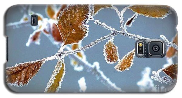 Ice Vines Galaxy S5 Case