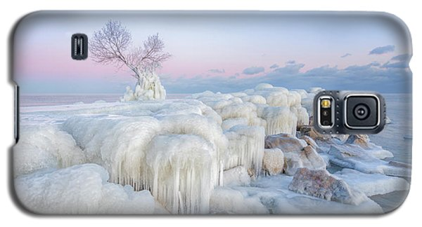 Cold Galaxy S5 Case - Ice Wonderland by Larry Deng