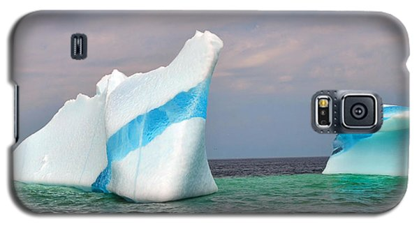 Iceberg Off The Coast Of Newfoundland Galaxy S5 Case by Lisa Phillips
