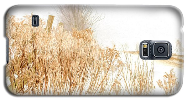 Iced Goldenrod At Fields Edge - Artistic Galaxy S5 Case