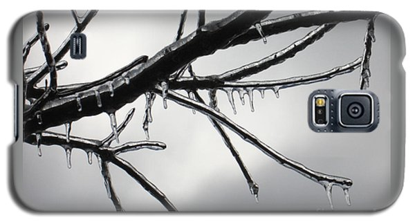 Galaxy S5 Case featuring the photograph Iced Tree by Ann Horn