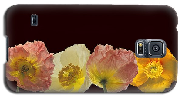 Iceland Poppies On Black Galaxy S5 Case