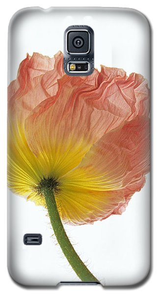 Iceland Poppy 1 Galaxy S5 Case
