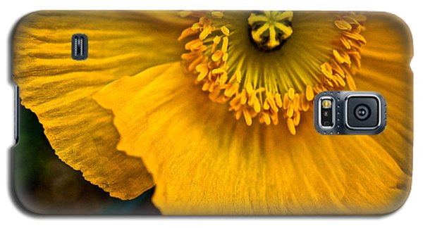 Iceland Poppy In Yellow Galaxy S5 Case