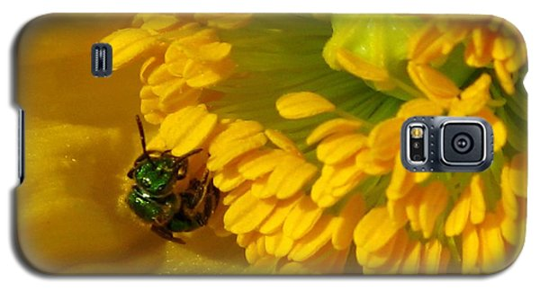 Galaxy S5 Case featuring the photograph Iceland Poppy Pollination by J McCombie