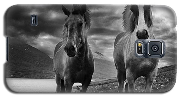 Galaxy S5 Case featuring the photograph Icelandic Horses by Frodi Brinks