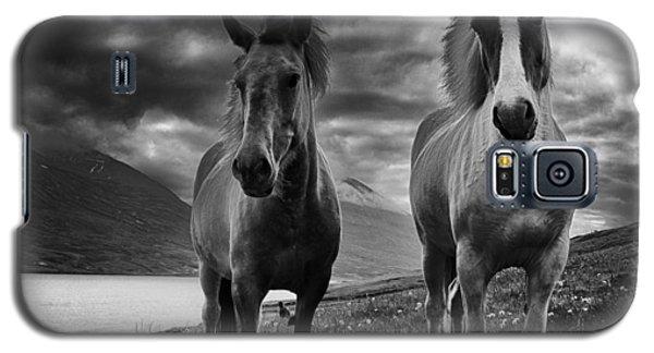 Icelandic Horses Galaxy S5 Case by Frodi Brinks