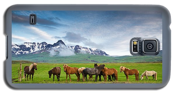 Icelandic Horses In Mountain Landscape In Iceland Galaxy S5 Case