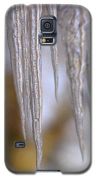 Icicle Art Galaxy S5 Case