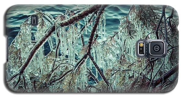Icy Branch Galaxy S5 Case