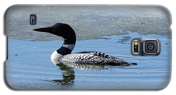 Galaxy S5 Case featuring the photograph Icy Loon by Steven Clipperton
