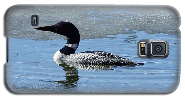 Icy Loon Galaxy S5 Case