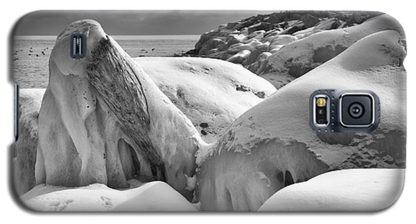 Icy Shoreline - Monochrome Galaxy S5 Case