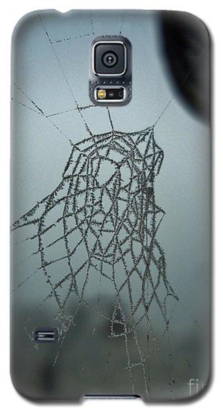 Icy Spiderweb Galaxy S5 Case