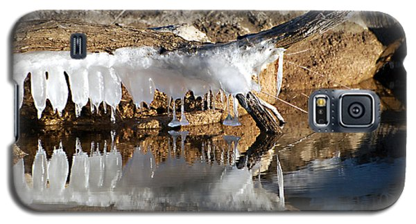 Galaxy S5 Case featuring the photograph Icy Teeth by Linda Cox