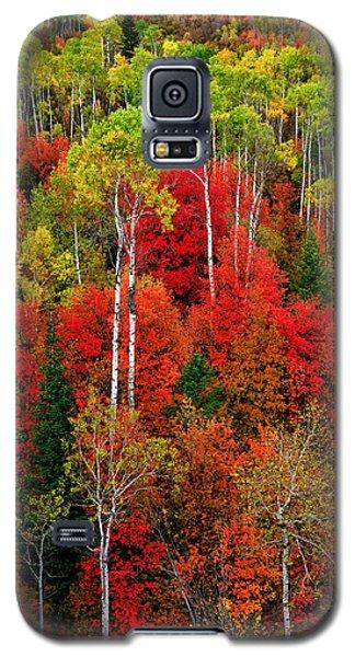 Idaho Autumn Galaxy S5 Case