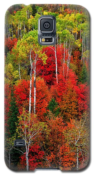 Idaho Autumn Galaxy S5 Case by Greg Norrell