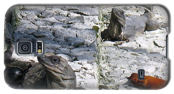 Iguana Bask In The Sun With You Galaxy S5 Case by Patti Whitten