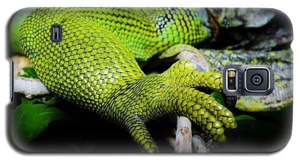 Iguana Details Galaxy S5 Case by Werner Lehmann
